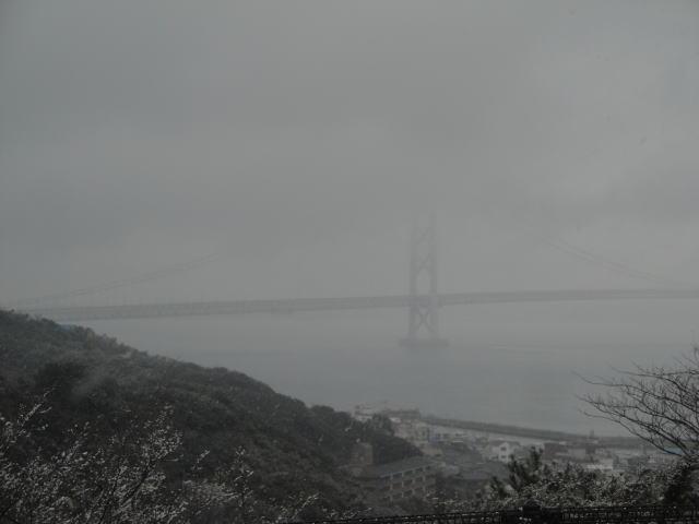 20122181