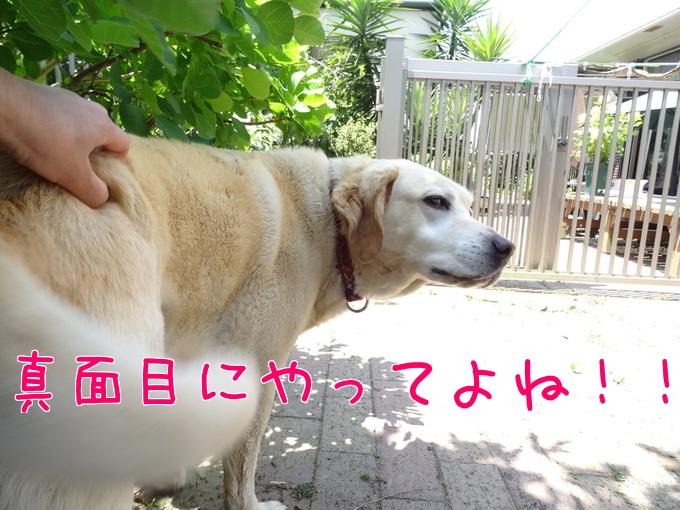 20145134_2