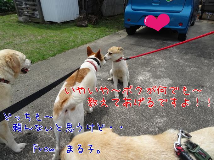 2014723_4